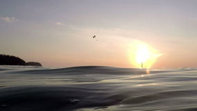View from sea on skydiver gliding during dawn stock footage