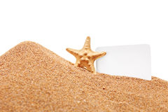 A view of a sea star and a white blank card Stock Photo