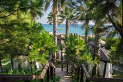 View on the sea with yellow motor boat, beach rest pavilions and pine trees from top of the stairs Royalty Free Stock Images