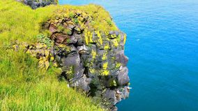 View of seabirds live on Basalt Rocks Cliff. At the seaside in Arnarstapi Fishing Village in Iceland stock video footage