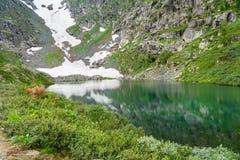 View on Second Lake of Karakol lakes in Altai Republic. Russia Stock Photos