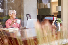 View Of Senior Woman Using Laptop Through Window. Holding A Hot Drink Smiling Stock Photography
