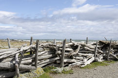 View of Seno Otway - Patagonia - Chile Stock Photography