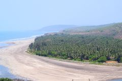 View of Serene Beach with Sea Waves with Pine Trees from Top - Anjarle Beach, Konkan, India. This is a photograph of Anjarle Beach, a serene and pristine beach Stock Photo