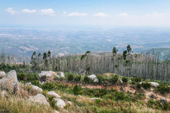 View of Serra de Monchique Monchique Mountains Royalty Free Stock Photography
