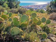 View at Sete from the Mount of St. Clair. South of France stock images