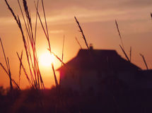 View of the setting sun through the grass near the house.  Royalty Free Stock Photography