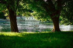 View from the shadow of two recreational boats doing rowing and sports in the waters of the Po river. royalty free stock photo
