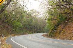 Sharp curve road in forest hill. View of sharp curve road in forest hill royalty free stock photos