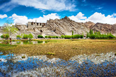 View of Shey Palace, Leh, Ladakh, Royalty Free Stock Images