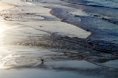 View of the shore of the ocean at low tide. Reflection of the sun in the ocean, surfers in the water. Stock Photo