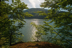 View from shore through trees to mountain lake at dawn Stock Photography