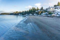 Winter Dash Point Shoreline 2 stock photo