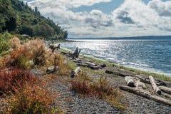 Seahurst Beach Shoreline 2. A view of the shoreline at Seahurst Beach in Burien, Washington royalty free stock photos