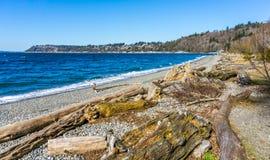 Beach Park Landscape. A view of the shoreline at Seahurst Beach Park in Burien, Washington royalty free stock image