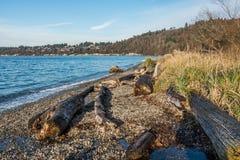 Seahurst Park Winter Landscape. A view of the shoreline at Seahurst Park in Burien, Washington. It is December stock photos