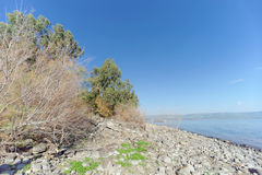 View of the shores of the Sea of Galilee near the Capernaum Royalty Free Stock Photo