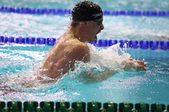 View side of man swims breaststroke in a swimming pool Royalty Free Stock Photos