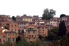 View on sienna houses, toscany, italy Stock Photography