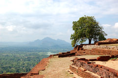 The view from Sigiriya (Lion\'s rock) Stock Image