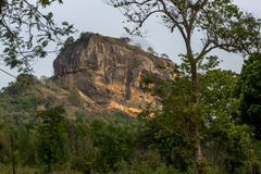 A view of Sigiriya Rock in Sri Lanka in the late afternoon. Royalty Free Stock Photos