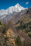 View of Siguniang Mountain from inside Changping Valley, Siguniangshan park, Sichuan Province, China stock image
