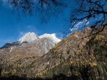 View of Siguniang Mountain from inside Changping Valley, Siguniangshan park, Sichuan Province, China royalty free stock image