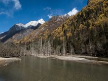 View of Siguniang Mountain from inside Changping Valley, Siguniangshan park, Sichuan Province, China stock photography