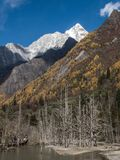 View of Siguniang Mountain from inside Changping Valley, Siguniangshan park, Sichuan Province, China royalty free stock images