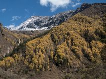 View of Siguniang Mountain from inside Changping Valley, Siguniangshan park, Sichuan Province, China stock photo