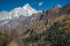 View of Siguniang Mountain from inside Changping Valley, Siguniangshan park, Sichuan Province, China royalty free stock photos