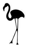 View on the silhouette of a flamingo Royalty Free Stock Photography