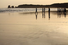 View on silhouette of group of people surfers heating up going to ocean in sunrise Royalty Free Stock Images