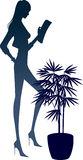 The view of silhouette woman Royalty Free Stock Photo