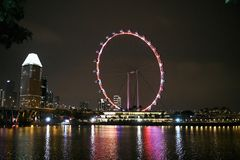 View of Singapore Flyer at night seen from Gardens by the Bay in Singapore. royalty free stock photography