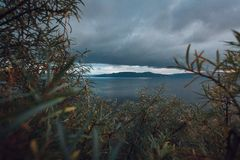 View of the sky and the mountains. Through a bush Royalty Free Stock Photos