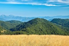 View of the Slovak mountains. Mountain meadow with mountain in background Stock Photo