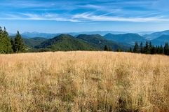 View of the Slovak mountains. Mountain meadow with mountain in background Royalty Free Stock Photo