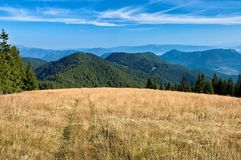View of the Slovak mountains. Mountain meadow with mountain in background Stock Images