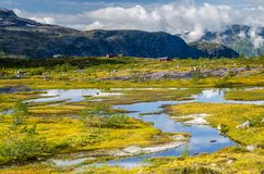 View of small blue lakes surrounded by yellow and green grass with red building in background on the Trolltunga trail stock image