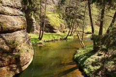View of small river in Bohemia Switzerland. National park, Czech republic Royalty Free Stock Photos