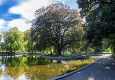 A view of a small shallow pond in the centre of Duthie Park, Aberdeen stock image