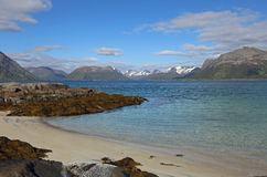 View from small strand over Gimsoystraumen, Lofoten. Small strand on Lofoten islands on a nice day with view over blue sea, snowy mountains on the background Royalty Free Stock Photography