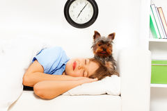View of small Yorkshire Terrier with sleeping boy Royalty Free Stock Photos