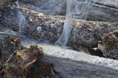 Smoke starting to creep out the logs. A view of the smoke that is starting to come out of the pile of wood logs in the old fire pit stock image