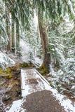 View on the snow bridge Royalty Free Stock Image
