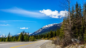 View of the snow capped Coast Mountains along the Duffey Lake Road. View of the snow capped Coast Mountains along Highway 99, also called The Duffey Lake Road Royalty Free Stock Image