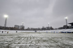 View of the snow-covered field Stock Images