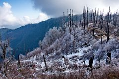 View of the snow-covered Himalayas from a height of 3250m stock images