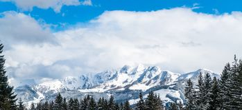 View on snow filled trees ans gletcher in Austria stock photography